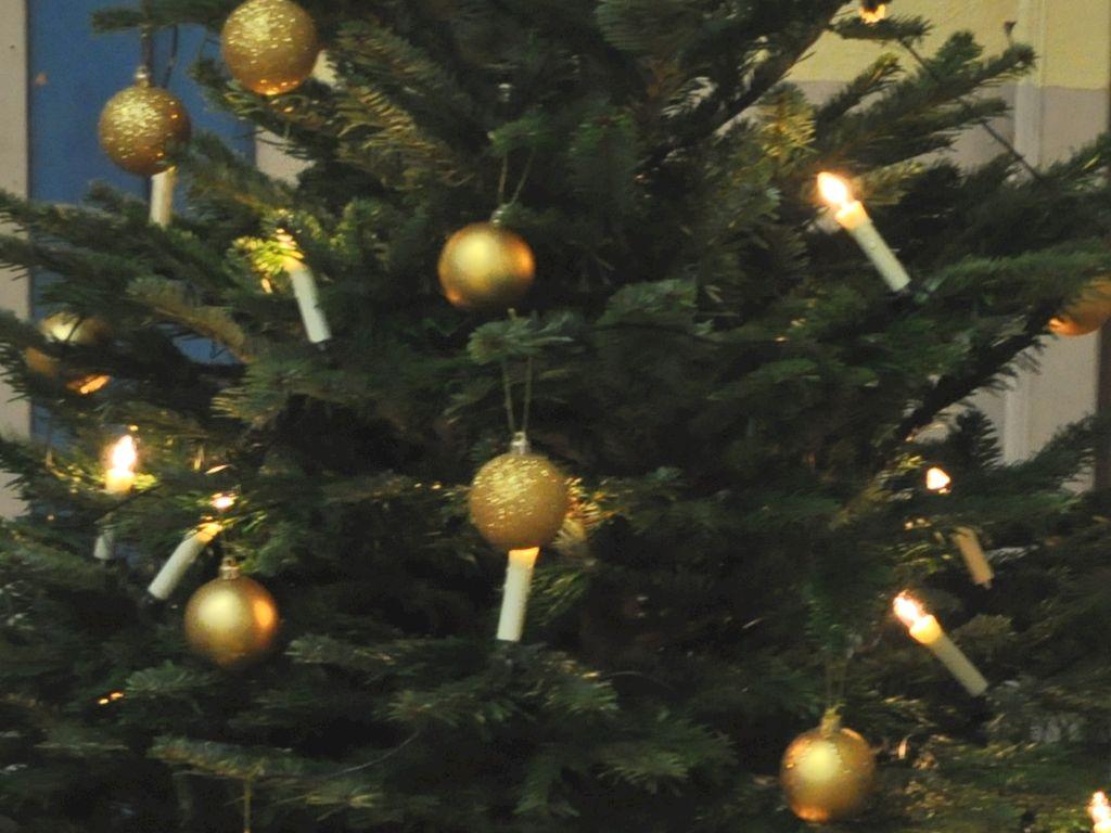 Weihnachtslehrgang '19